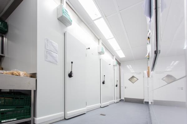 Kühlzellenbau - reailisierter Kühlzellenkomplex zur Normal- und Tiefkühlung